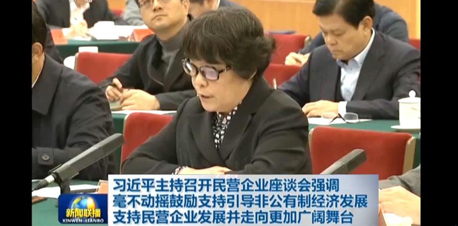 时代集团总裁王小兰参加民营企业座谈会